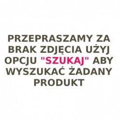 BENEK PINIO ŻWIREK 5L CYTRYNA